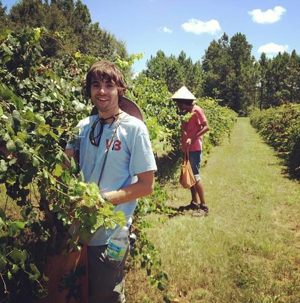 WWOOF – Hospedagem gratuita em fazendas orgânicas ao redor do mundo