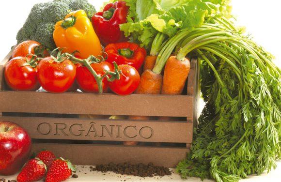 A colaboração vem ajudando pequenos produtores à vender orgânicos em Porto Alegre